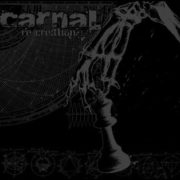 carnal_recreation