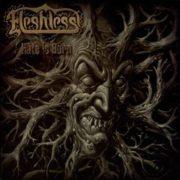 fleshless_hatedigi