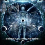 human_cerebral