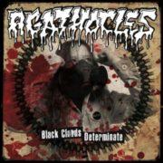 agathocles_black